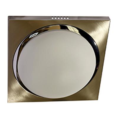 LED Ceiling 96-11