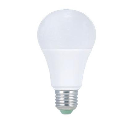A19 LED Bulb - 12W